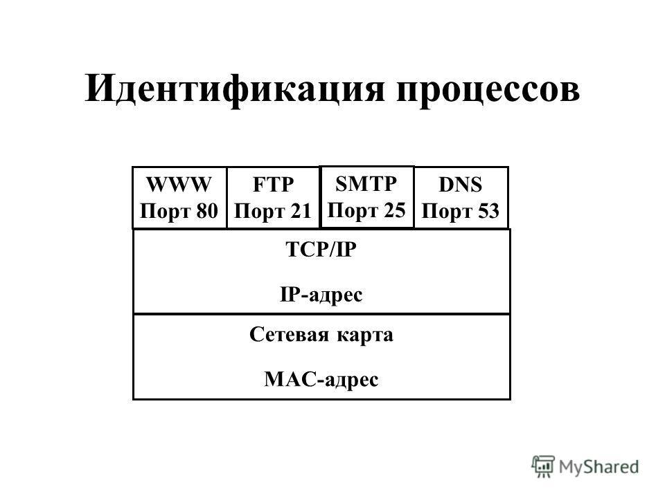 Идентификация процессов WWW Порт 80 FTP Порт 21 SMTP Порт 25 DNS Порт 53 TCP/IP IP-адрес Сетевая карта MAC-адрес