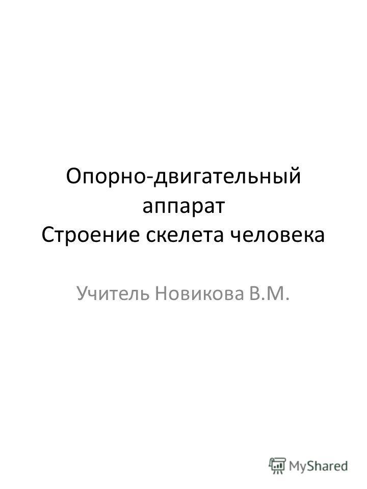 Опорно-двигательный аппарат Строение скелета человека Учитель Новикова В.М.
