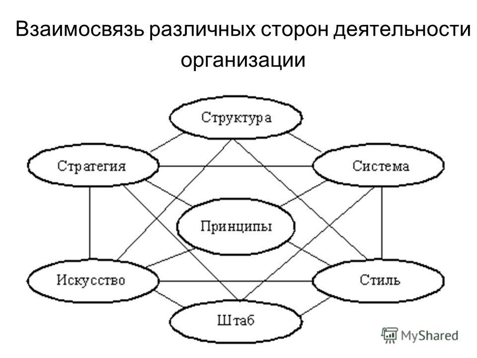 Взаимосвязь различных сторон деятельности организации