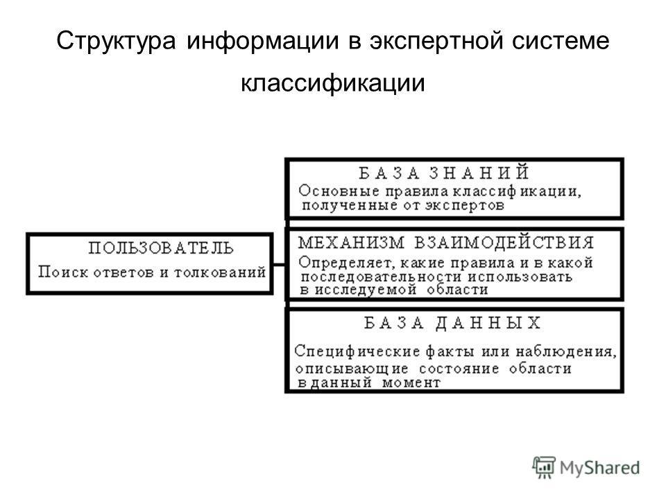 Структура информации в экспертной системе классификации