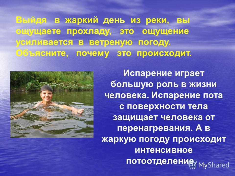 Выйдя в жаркий день из реки, вы ощущаете прохладу, это ощущение усиливается в ветреную погоду. Объясните, почему это происходит. Испарение играет большую роль в жизни человека. Испарение пота с поверхности тела защищает человека от перенагревания. А
