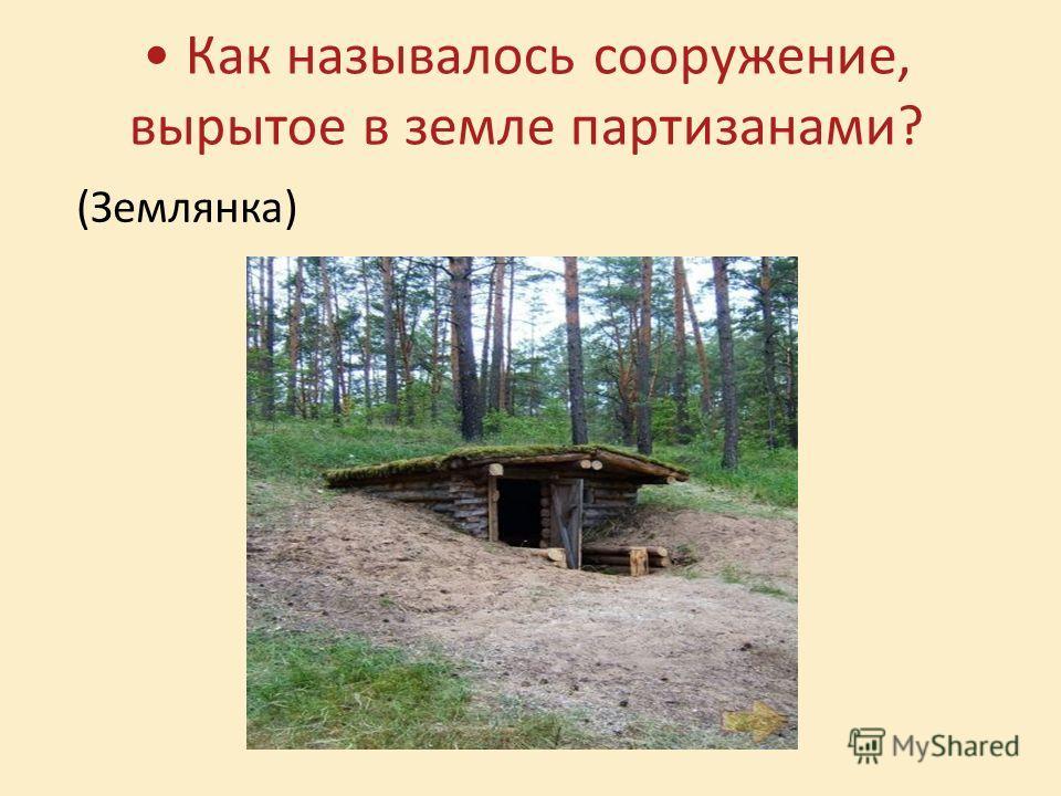 Как называлось сооружение, вырытое в земле партизанами? (Землянка)