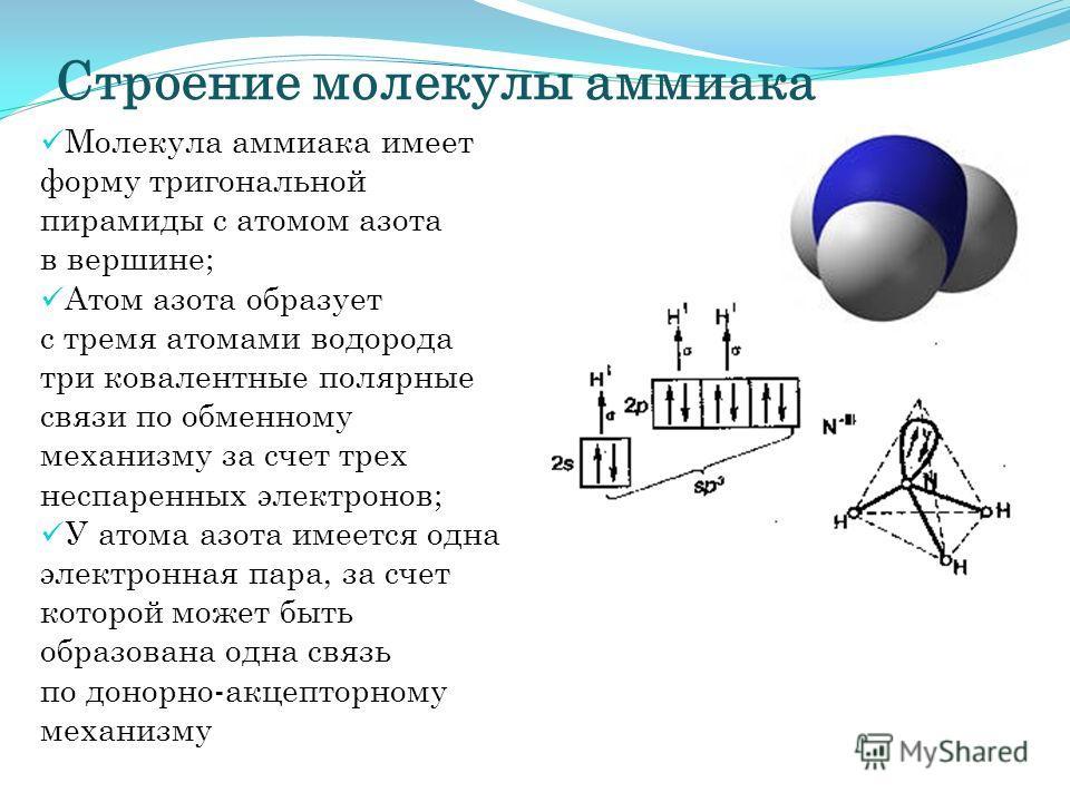 Строение молекулы аммиака Молекула аммиака имеет форму тригональной пирамиды с атомом азота в вершине; Атом азота образует с тремя атомами водорода три ковалентные полярные связи по обменному механизму за счет трех неспаренных электронов; У атома азо