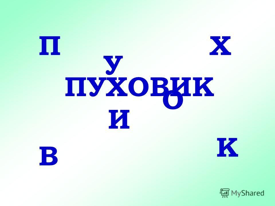 П У Х О В И К ПУХОВИК