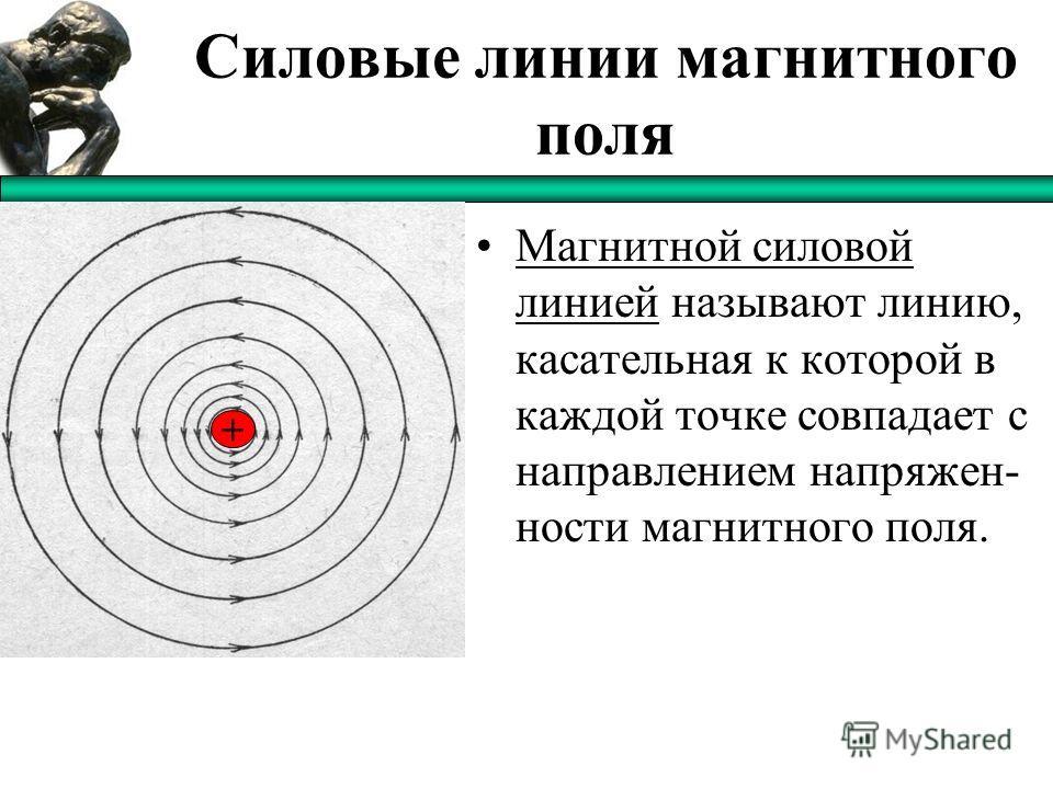 Силовые линии магнитного поля Магнитной силовой линией называют линию, касательная к которой в каждой точке совпадает с направлением напряжен- ности магнитного поля. +