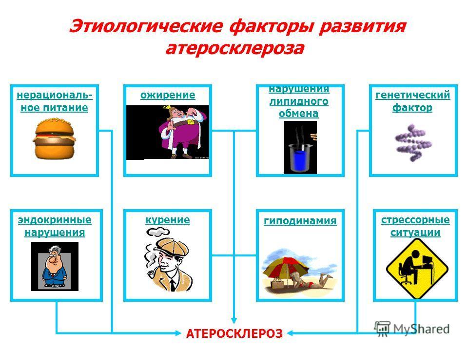Этиологические факторы развития атеросклероза АТЕРОСКЛЕРОЗ нерациональ- ное питание ожирение нарушения липидного обмена генетический фактор эндокринные нарушения курение гиподинамия стрессорные ситуации