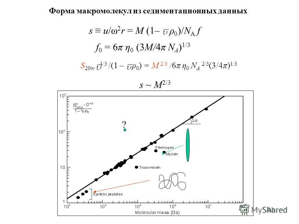 23 Форма макромолекул из седиментационных данных s u/ω 2 r = M (1– ρ 0 )/N A f f 0 = 6π η 0 (3M/4π N A ) 1/3 S 20w 1/3 /(1 – ρ 0 ) = M 2/3 /6π η 0 N A 2/3 (3/4π) 1/3 ? s ~ M 2/3
