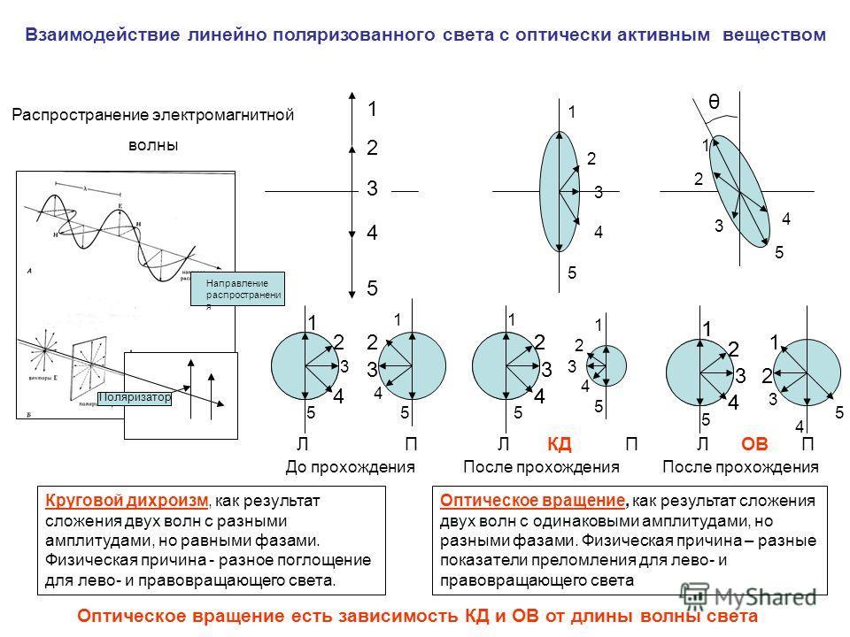 Распространение электромагнитной волны Взаимодействие линейно поляризованного света с оптически активным веществом 1212 4545 3 Поляризатор Направление распространени я 1 2 3 4 1 2 3 4 55 1 2 3 4 1 2 3 4 5 2 4 5 До прохождения После прохождения После