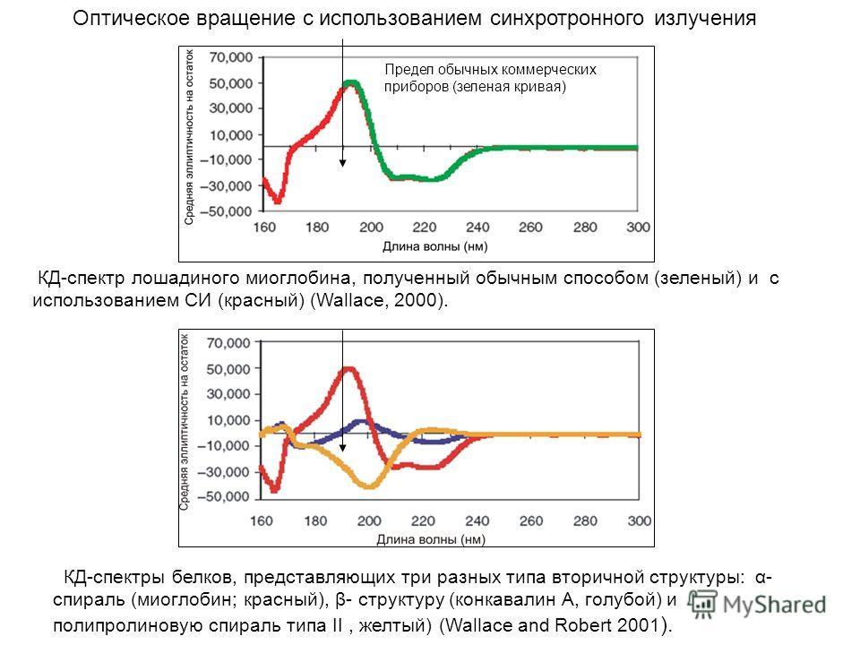 КД-спектр лошадиного миоглобина, полученный обычным способом (зеленый) и с использованием СИ (красный) (Wallace, 2000). КД-спектры белков, представляющих три разных типа вторичной структуры: α- спираль (миоглобин; красный), β- структуру (конкавалин A