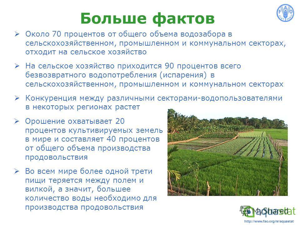 http://www.fao.org/nr/aquastat Больше фактов Орошение охватывает 20 процентов культивируемых земель в мире и составляет 40 процентов от общего объема производства продовольствия Во всем мире более одной трети пищи теряется между полем и вилкой, а зна