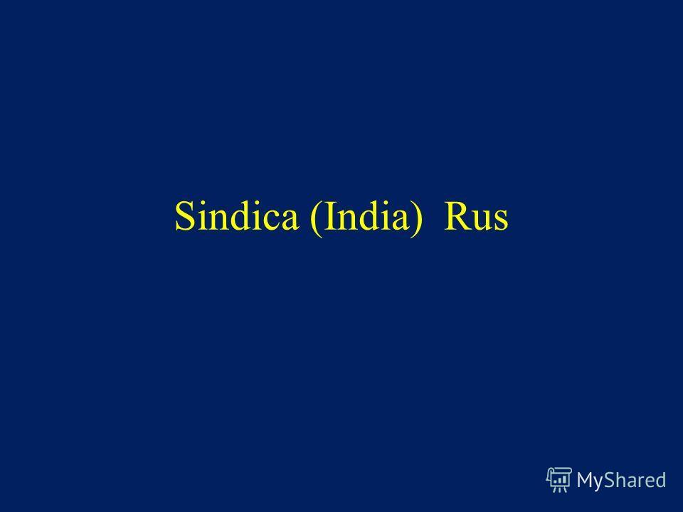Sindica (India) Rus