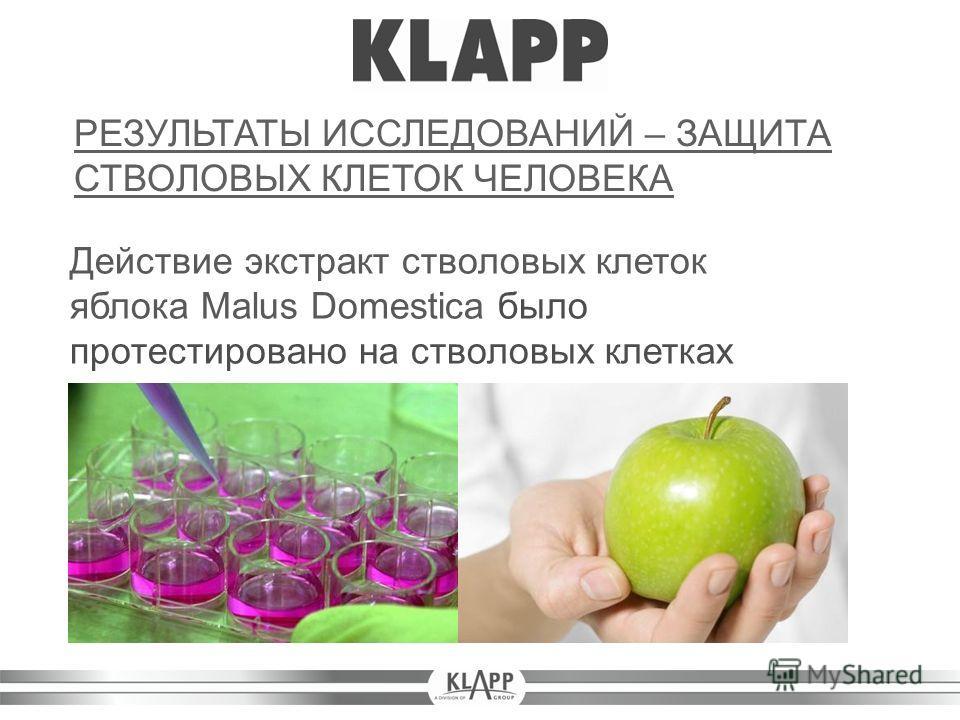 Действие экстракт стволовых клеток яблока Malus Domestica было протестировано на стволовых клетках человека. РЕЗУЛЬТАТЫ ИССЛЕДОВАНИЙ – ЗАЩИТА СТВОЛОВЫХ КЛЕТОК ЧЕЛОВЕКА