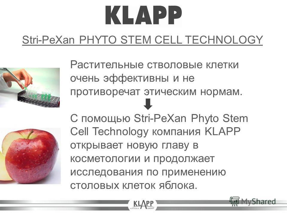 Растительные стволовые клетки очень эффективны и не противоречат этическим нормам. С помощью Stri-PeXan Phyto Stem Cell Technology компания KLAPP открывает новую главу в косметологии и продолжает исследования по применению столовых клеток яблока. Str