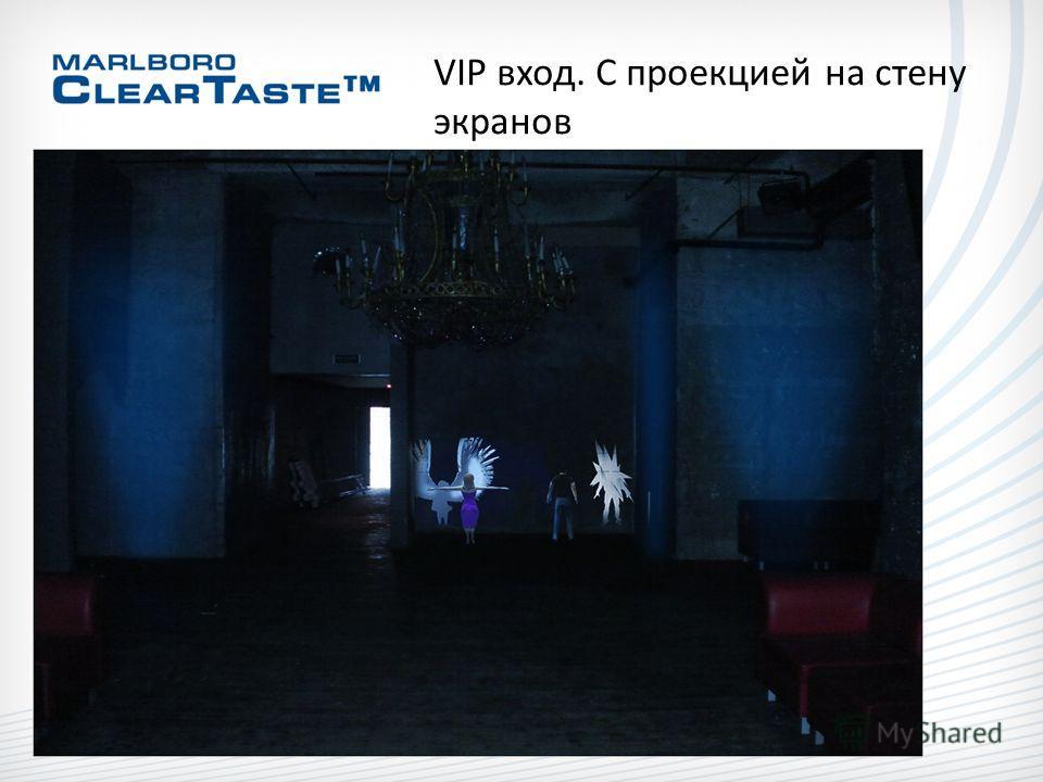 VIP вход. С проекцией на стену экранов