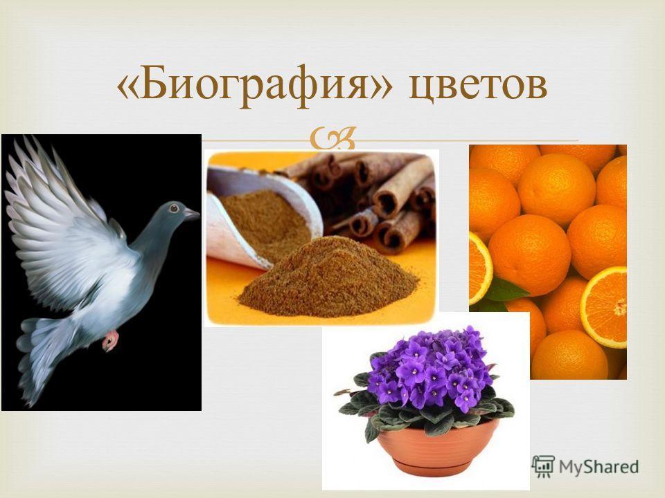 « Биография » цветов