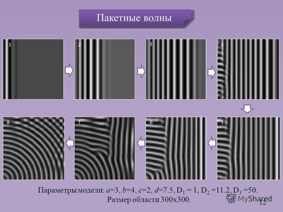 Параметры модели: a=3, b=4, c=2, d=7.5, D 1 = 1, D 2 =11.2, D 3 =50. Размер области 300x300. 12 6 3 2 1 5 4 8 7