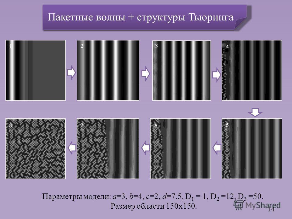 Параметры модели: a=3, b=4, c=2, d=7.5, D 1 = 1, D 2 =12, D 3 =50. Размер области 150x150. 14 6 3 2 1 5 4 8 7