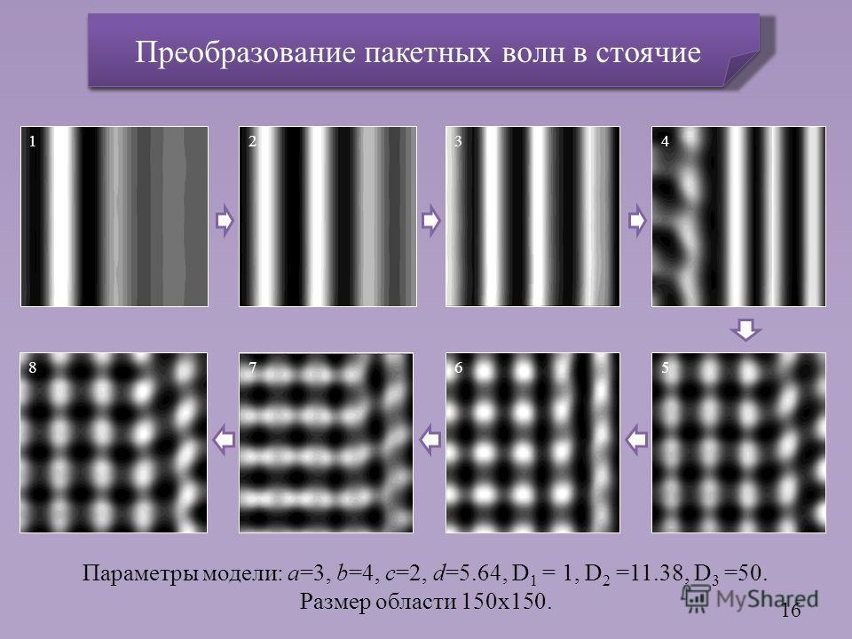Параметры модели: a=3, b=4, c=2, d=5.64, D 1 = 1, D 2 =11.38, D 3 =50. Размер области 150x150. 16 1324 5678