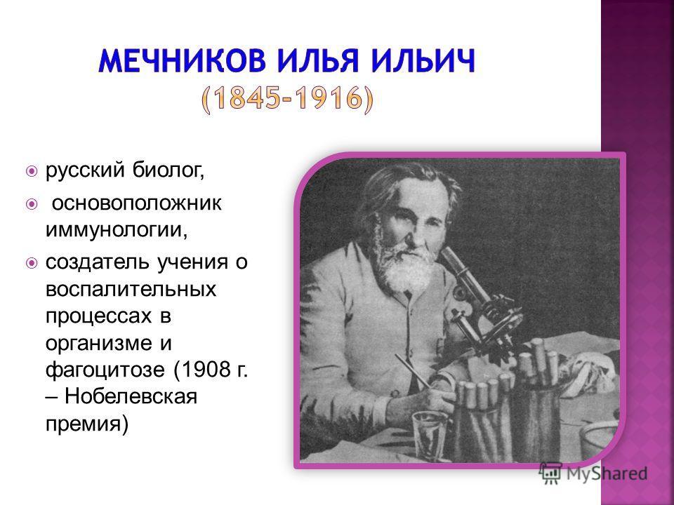 русский биолог, основоположник иммунологии, создатель учения о воспалительных процессах в организме и фагоцитозе (1908 г. – Нобелевская премия)