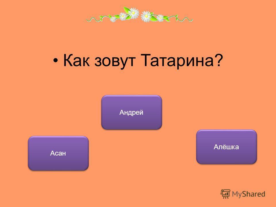 Как зовут Татарина? Асан Андрей Алёшка