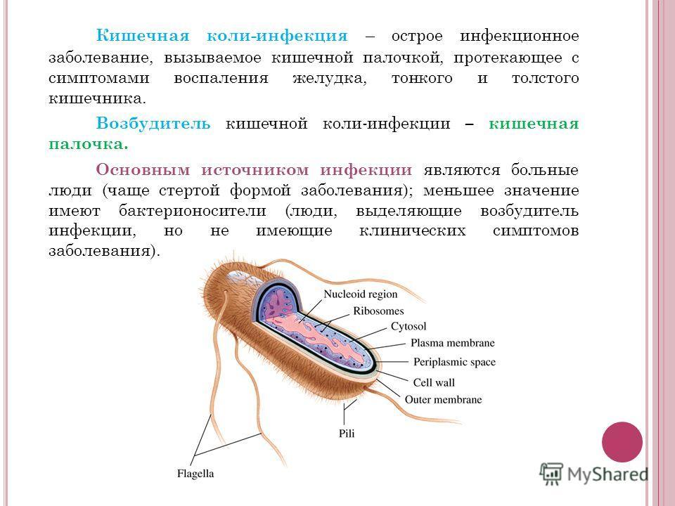 Кишечная коли-инфекция – острое инфекционное заболевание, вызываемое кишечной палочкой, протекающее с симптомами воспаления желудка, тонкого и толстого кишечника. Возбудитель кишечной коли-инфекции – кишечная палочка. Основным источником инфекции явл