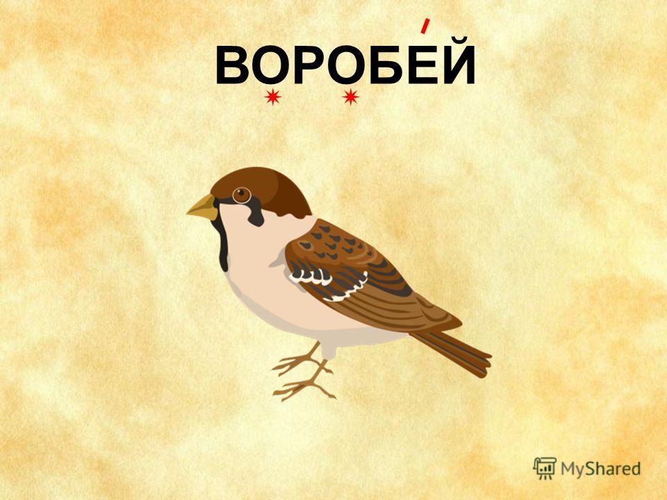 Картинно-словарныйдиктант