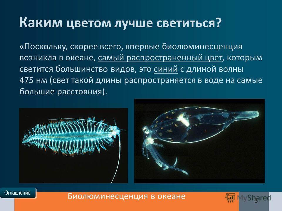 Оглавление Биолюминесценция в океане 8 Каким цветом лучше светиться? «Поскольку, скорее всего, впервые биолюминесценция возникла в океане, самый распространенный цвет, которым светится большинство видов, это синий с длиной волны 475 нм (свет такой дл