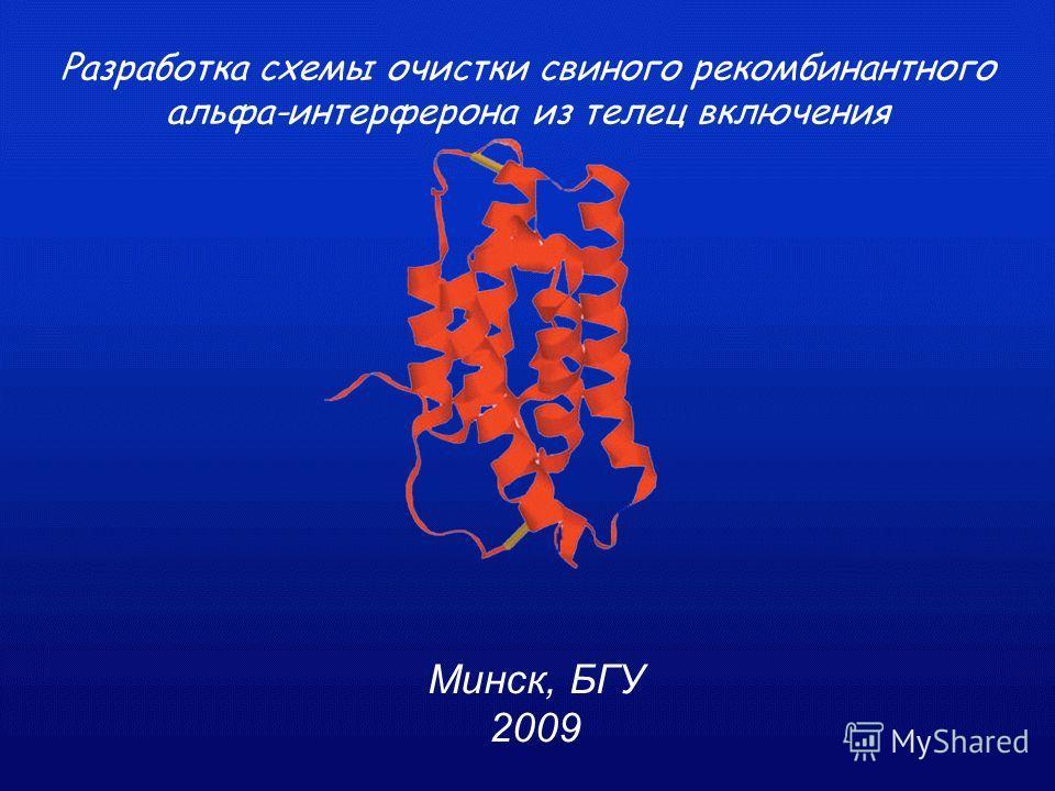 Минск, БГУ 2009 Разработка схемы очистки свиного рекомбинантного альфа-интерферона из телец включения