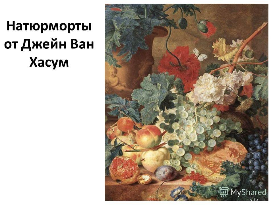 Натюрморты от Джейн Ван Хасум