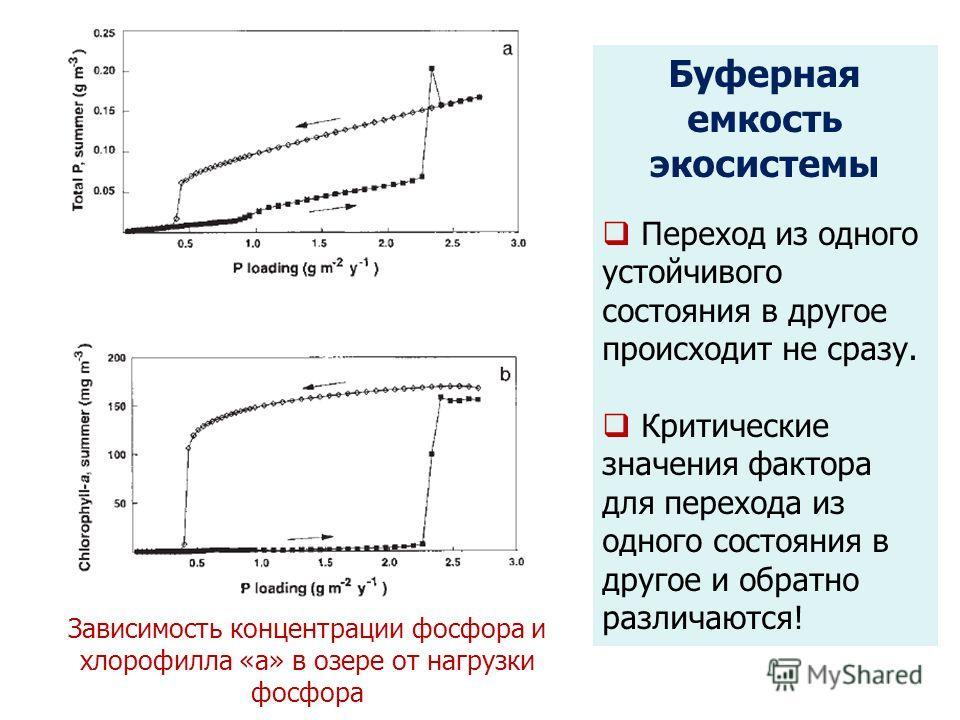 Зависимость концентрации фосфора и хлорофилла «а» в озере от нагрузки фосфора Буферная емкость экосистемы Переход из одного устойчивого состояния в другое происходит не сразу. Критические значения фактора для перехода из одного состояния в другое и о