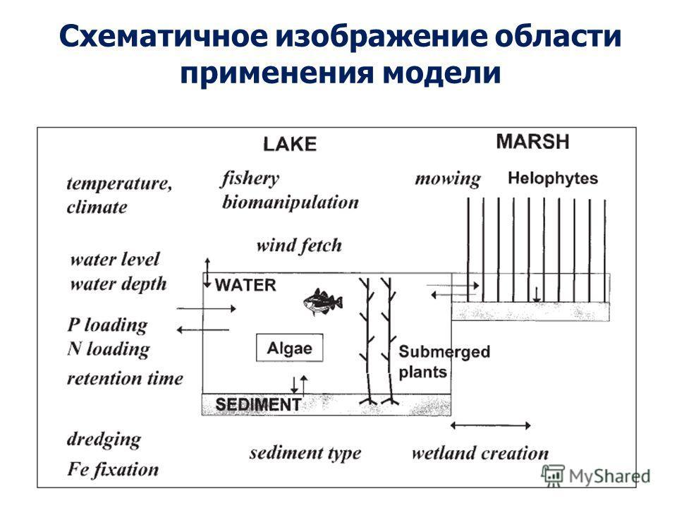 Схематичное изображение области применения модели