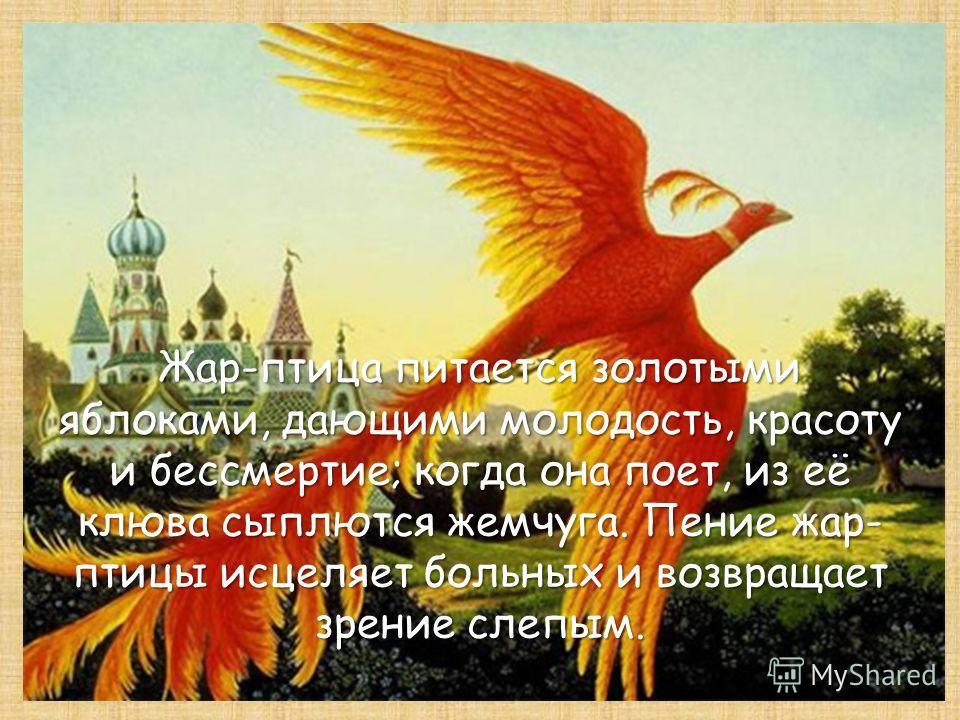 Жар-птица питается золотыми яблоками, дающими молодость, красоту и бессмертие; когда она поет, из её клюва сыплются жемчуга. Пение жар- птицы исцеляет больных и возвращает зрение слепым.