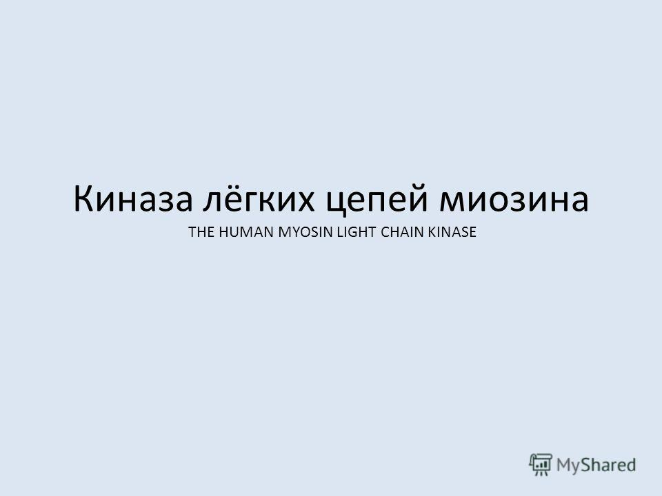 Киназа лёгких цепей миозина THE HUMAN MYOSIN LIGHT CHAIN KINASE