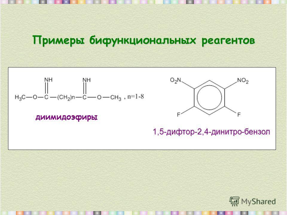 Примеры бифункциональных реагентов диимидоэфиры 1,5-дифтор-2,4-динитро-бензол