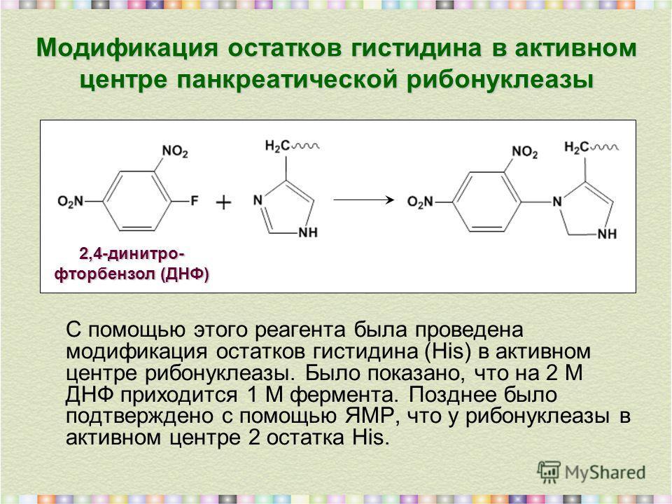 Модификация остатков гистидина в активном центре панкреатической рибонуклеазы С помощью этого реагента была проведена модификация остатков гистидина (His) в активном центре рибонуклеазы. Было показано, что на 2 М ДНФ приходится 1 М фермента. Позднее