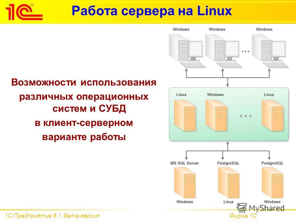 Фирма 1С1С:Предприятие 8.1. Бета-версия Работа сервера на Linux Возможности использования различных операционных систем и СУБД в клиент-серверном варианте работы