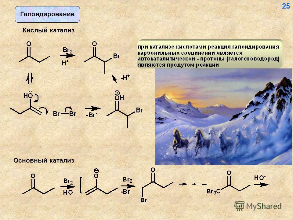 Галоидирование Кислый катализ Основный катализ 25