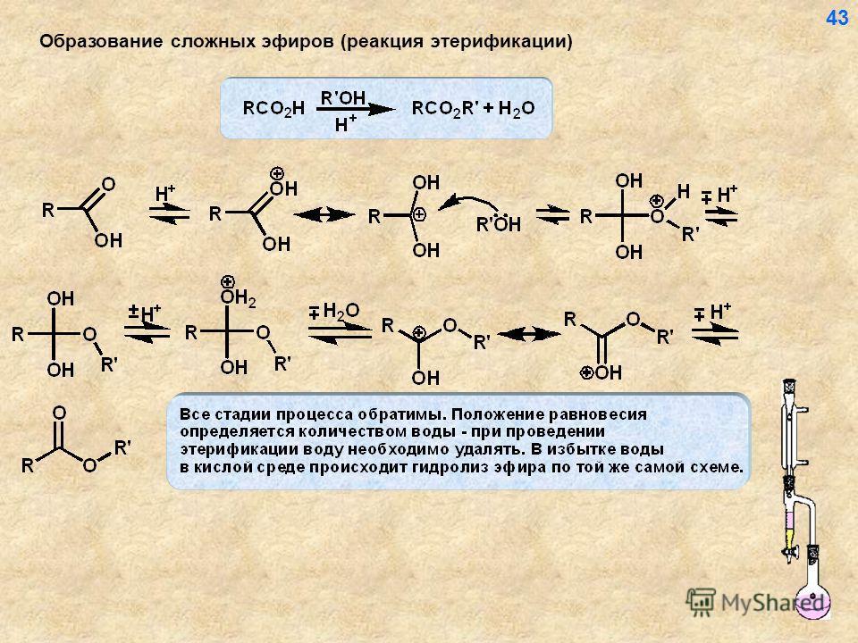 Образование сложных эфиров (реакция этерификации) 43