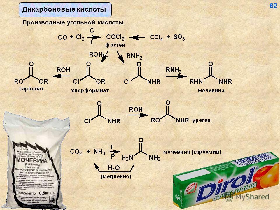 Дикарбоновые кислоты Производные угольной кислоты 62