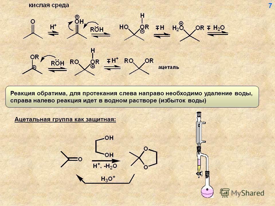Реакция обратима, для протекания слева направо необходимо удаление воды, справа налево реакция идет в водном растворе (избыток воды) Ацетальная группа как защитная: 7