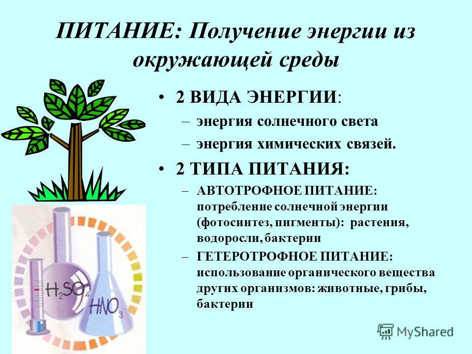 ПИТАНИЕ: Получение энергии из окружающей среды 2 ВИДА ЭНЕРГИИ: –энергия солнечного света –энергия химических связей. 2 ТИПА ПИТАНИЯ: –АВТОТРОФНОЕ ПИТАНИЕ: потребление солнечной энергии (фотосинтез, пигменты): растения, водоросли, бактерии –ГЕТЕРОТРОФ