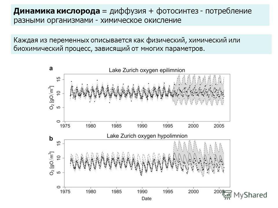 Динамика кислорода = диффузия + фотосинтез - потребление разными организмами - химическое окисление Каждая из переменных описывается как физический, химический или биохимический процесс, зависящий от многих параметров.