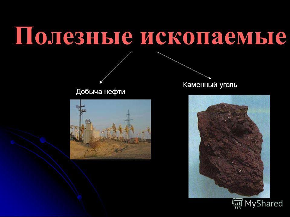 Полезные ископаемые Добыча нефти Каменный уголь