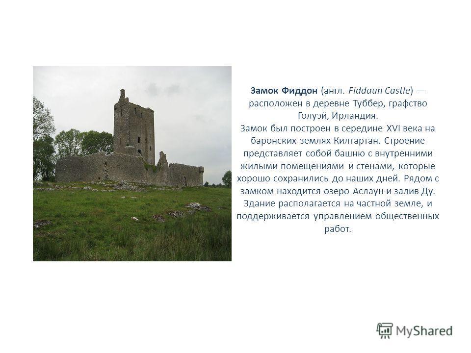 Замок Фиддон (англ. Fiddaun Castle) расположен в деревне Туббер, графство Голуэй, Ирландия. Замок был построен в середине XVI века на баронских землях Килтартан. Строение представляет собой башню с внутренними жилыми помещениями и стенами, которые хо