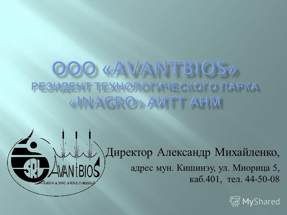 Директор Александр Михайленко, адрес мун. Кишинэу, ул. Миорица 5, каб.401, тел. 44-50-08