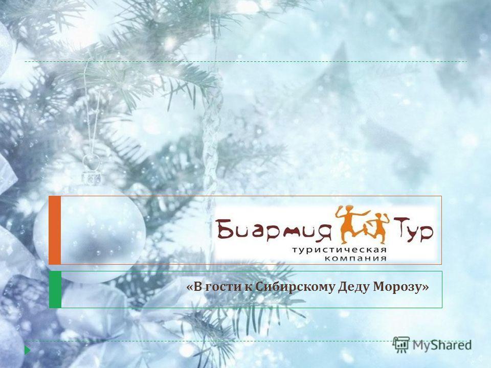 « В гости к Сибирскому Деду Морозу »