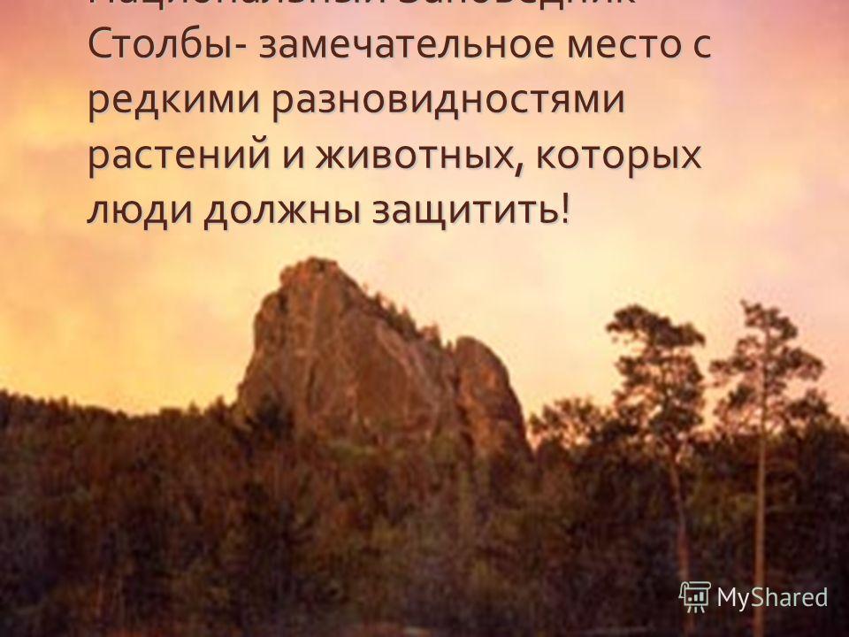 Национальный Заповедник Столбы - замечательное место с редкими разновидностями растений и животных, которых люди должны защитить !