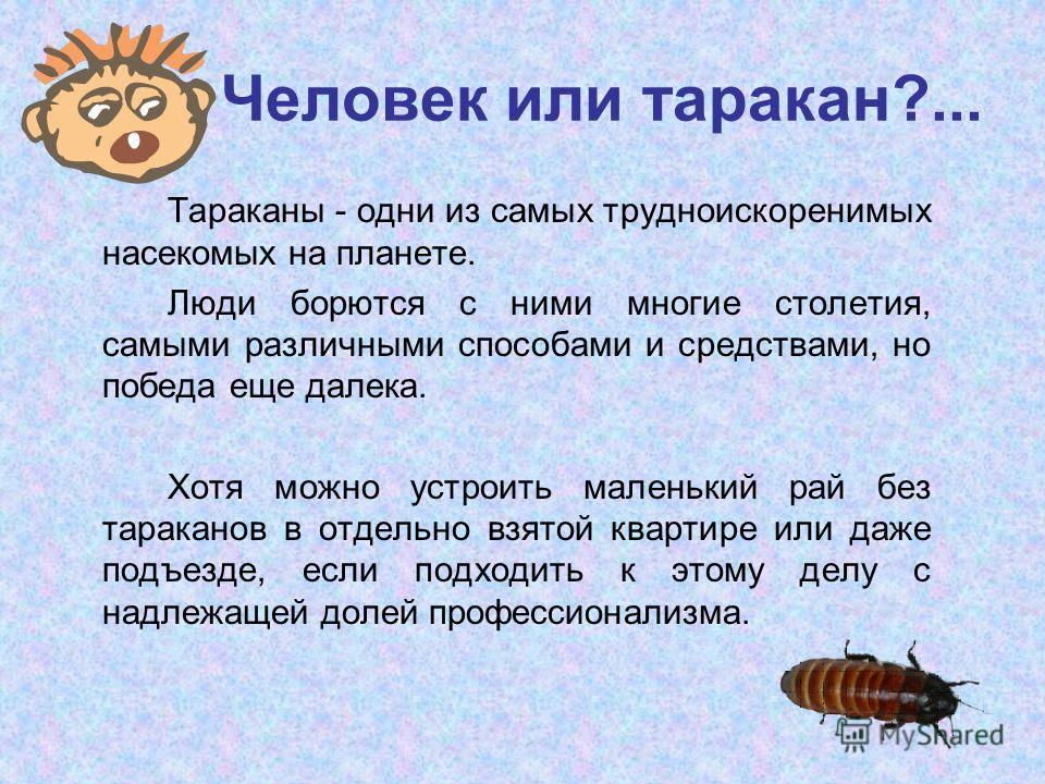 Человек или таракан?... Тараканы - одни из самых трудноискоренимых насекомых на планете. Люди борются с ними многие столетия, самыми различными способами и средствами, но победа еще далека. Хотя можно устроить маленький рай без тараканов в отдельно в