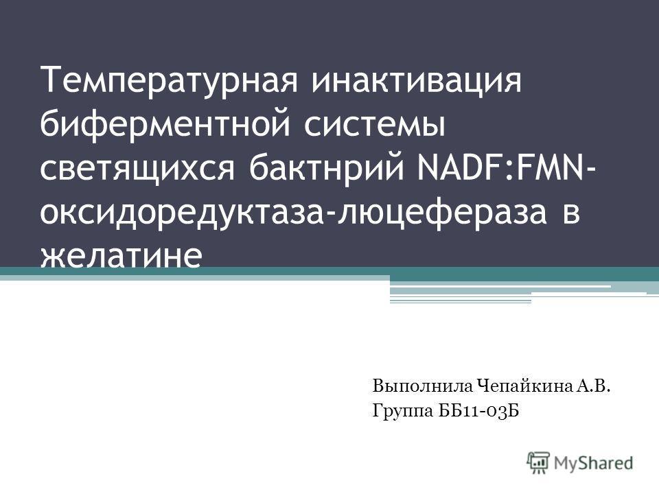 Температурная инактивация биферментной системы светящихся бактнрий NADF:FMN- оксидоредуктаза-люцефераза в желатине Выполнила Чепайкина А.В. Группа ББ11-03Б