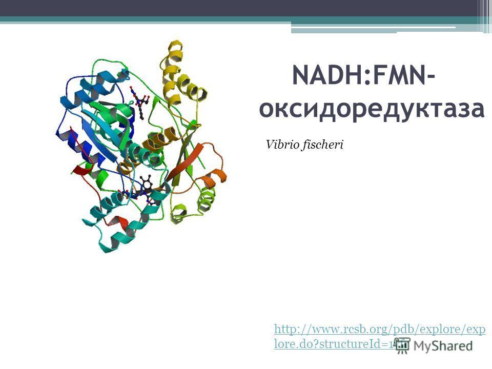 Оксидоредуктаза